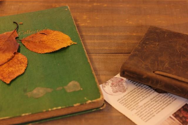 魔術を使いたければこの本を読もう!